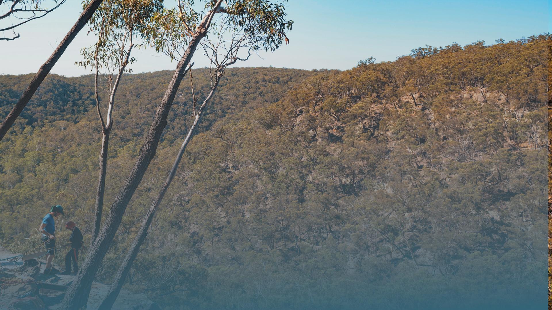 NSW abseil Header Blue-1